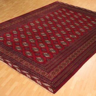 Turkeman PR 716